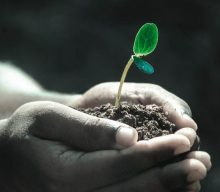 Permaculture Education: Care and Appreciation of Soil